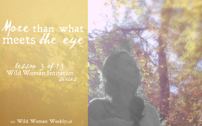More Than What Meets the Eye {Wild Woman Initiation Series: Lesson 3}
