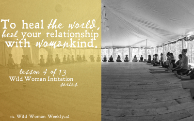 To Heal the World, Heal Your Relationship with Womankind {Wild Woman Initiation Series: Lesson 4}